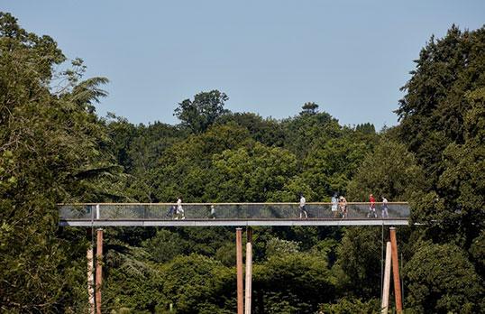 Stihl-Treetop-Walkway-by-Rob-Parrish